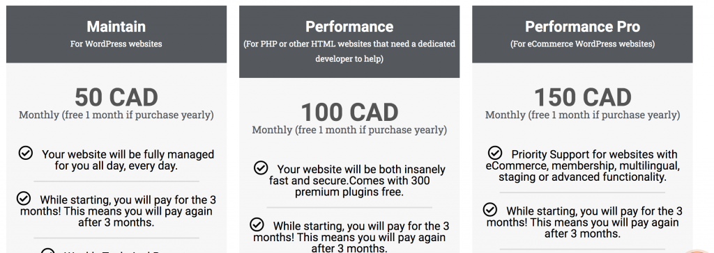 Pricing table to maintain and take care of a website from a local website agency in Montreal Quebec Canada.